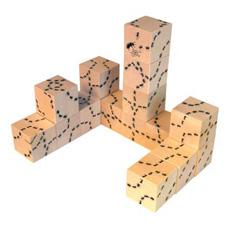 ant_blocks_romp.jpg
