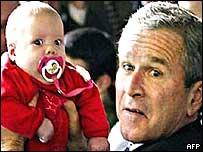 bush_baby_afp.jpg