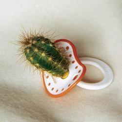 cactus_pacifier.jpg
