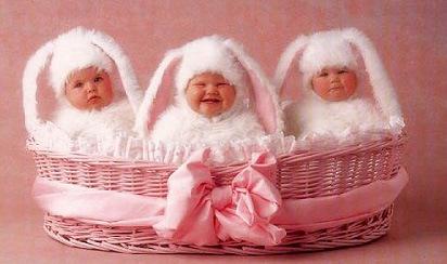 geddes_bunnies.jpg