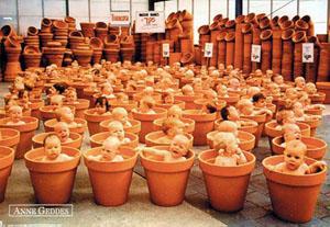 geddes_flowerpots.jpg
