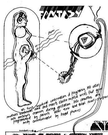 inflatocookbook_fetus.jpg