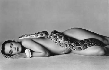 kinski_avedon_snake.jpg