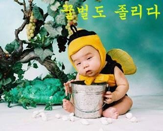 koreanbaby.jpg