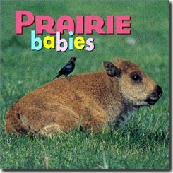 prairie_babies.jpg