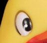 rubber_duck.jpg