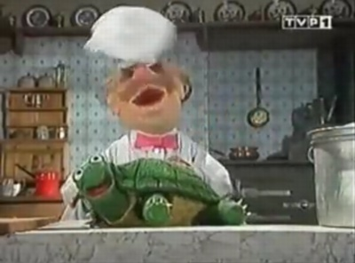 swedish_chef_turtle.jpg