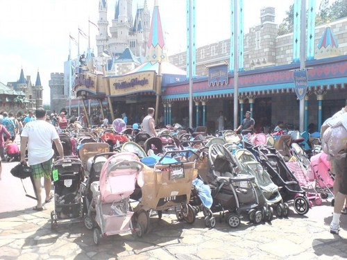 dt_dw_strollers1.jpg