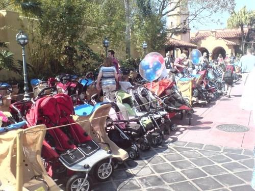 dt_dw_strollers2.jpg