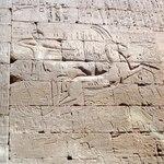 sun_ra_egypt_vinyl_cov.jpg