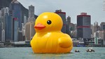 hong_kong_duck_cnn.jpg