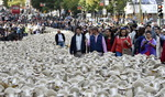 madrid_sheep_afp-getty.jpg